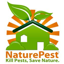 The Finest In Natural Eco Friendly Pest Control Miami Trusts Since 2009